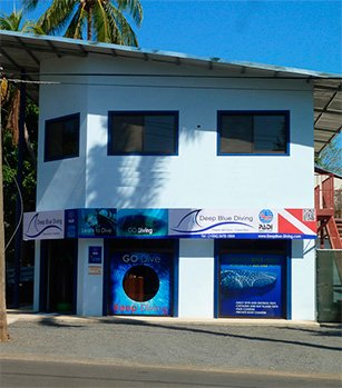 BUCEO EN COSTA RICA-DEEP BLUE DIVING