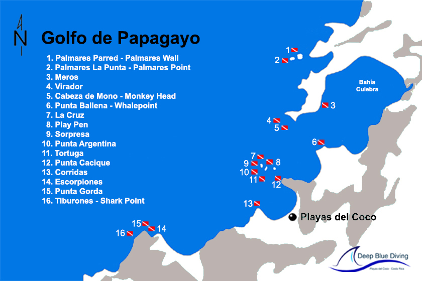 divesites golfo de papagayo deep blue diving