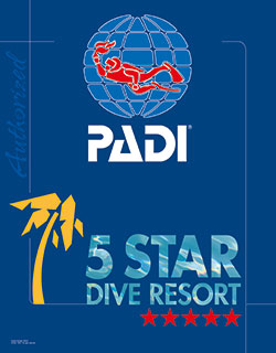 scuba-diving-in-costa-rica-deepblue-diving-padi-logo